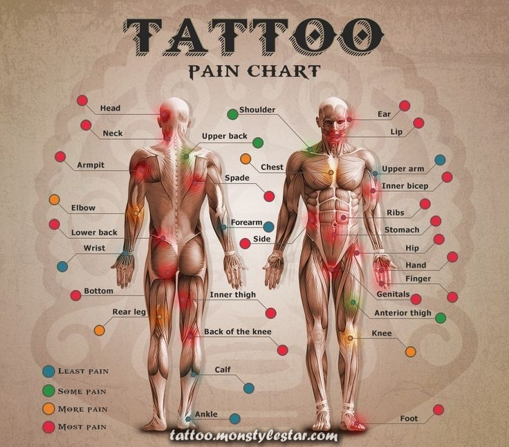 Wondering how much the next tattoo will hurt? A tattoo enthusiast ...